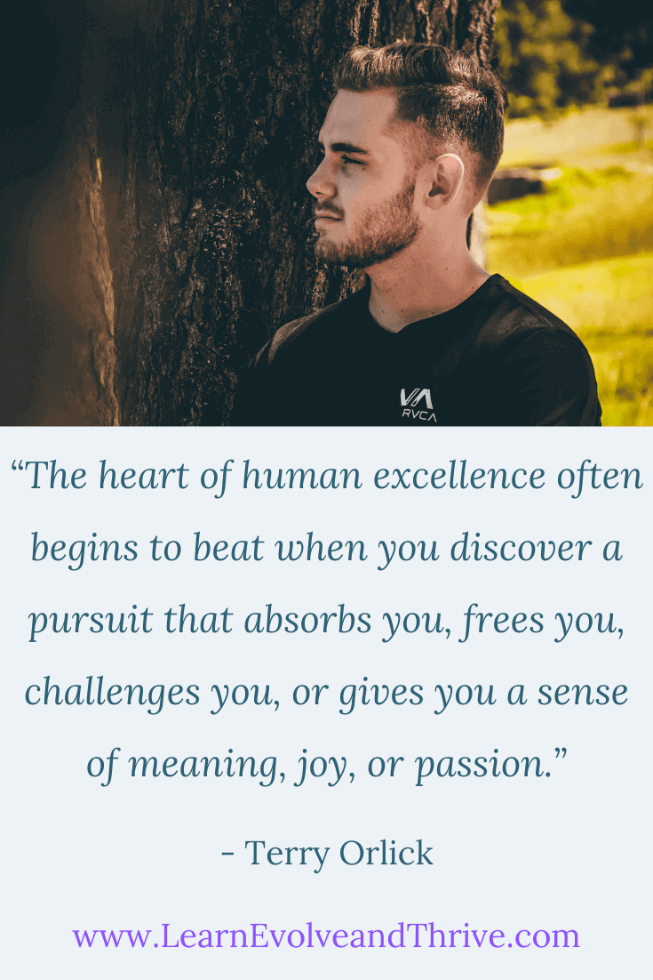 The Heart of Human Excellence Terry Orlick Quote